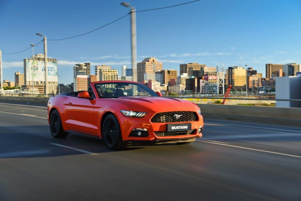 Mustang_0178
