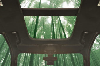 FORD INVESTIGATES USING BAMBOO FOR INTERIORS
