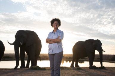 AMARULA RAISES ELEPHANT CONSERVATION AWARENESS ON WORLD ELEPHANT DAY